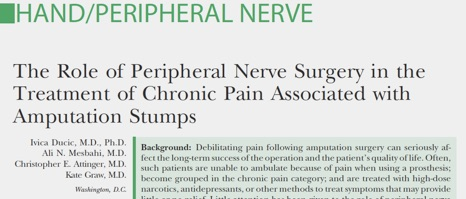 Peripheral Nerve 2